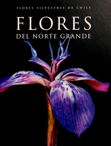 libro-flores-del-norte-grande